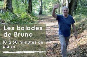 Les balades avec Bruno