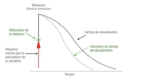 Comment gérer le stress