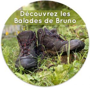 Les balades de Bruno, logo